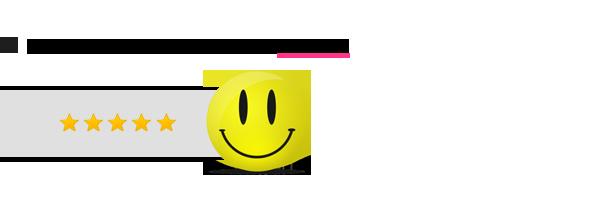 SocialFans - WP Responsive Social Counter Plugin 5